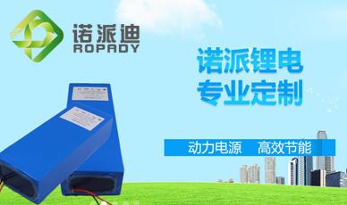 天津诺派科技有限公司官网_天津网站建设网页设计案例