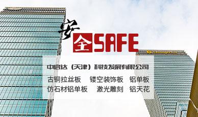 中启达(天津)科技发展有限公司官网_天津网站建设网页设计案例