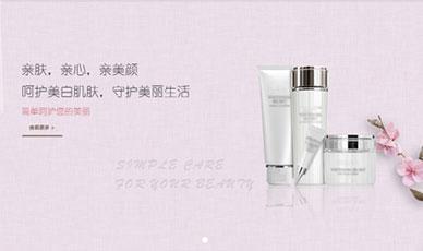 品牌化妆品案例_是青春 更是青纯_天津网站建设网页设计案例